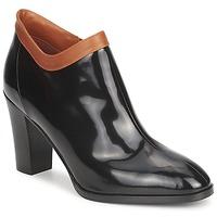 Skor Dam Boots Sonia Rykiel 654802 Svart / Okrafärgad