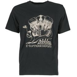 textil Herr T-shirts Dickies BRIDGEVILLE Svart