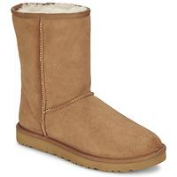 Skor Dam Boots UGG CLASSIC SHORT Chestnut