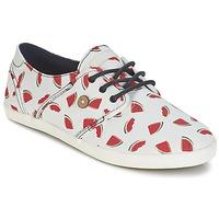 Skor Dam Sneakers Faguo CYPRESS Vit / Röd