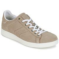 Sneakers Geox WARRENS B