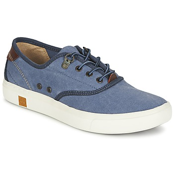 Sneakers Timberland AMHERST OXFORD