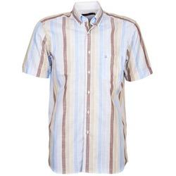 textil Herr Kortärmade skjortor Pierre Cardin 539936240-130 Blå / Beige / Brun