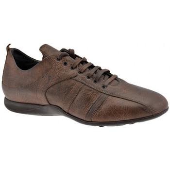 Skor Herr Höga sneakers Docksteps  Brun