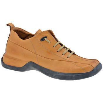 Skor Herr Höga sneakers Pawelk's  Brun