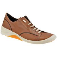 Skor Herr Sneakers Pawelk's  Brun