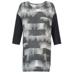 textil Dam Korta klänningar Bench CRISP Svart / Grå
