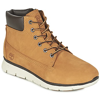 Skor Barn Höga sneakers Timberland KILLINGTON 6 IN Vetefärgad
