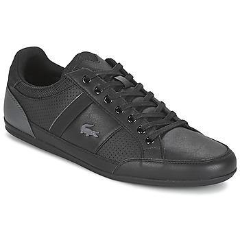 Skor Herr Sneakers Lacoste CHAYMON 316 1 Svart