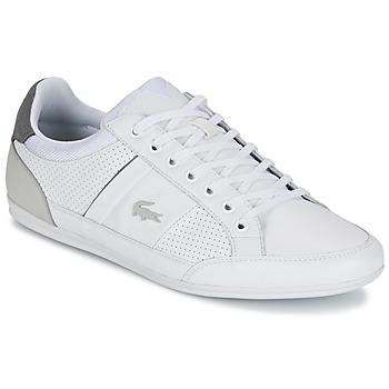Skor Herr Sneakers Lacoste CHAYMON 316 1 Vit / Grå