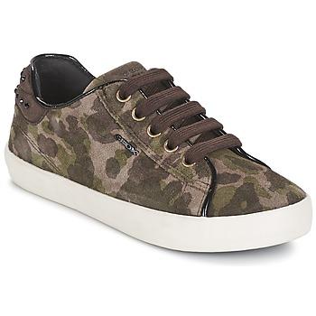 Skor Flickor Sneakers Geox KIWI GIRL Grön