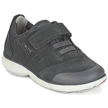 Skor Pojk Sneakers Geox NEBULA BOY Grå