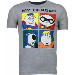 textil Herr T-shirts Local Fanatic Super Family My Heroes Grå