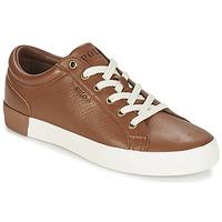 Skor Herr Sneakers Ralph Lauren ALDRIC II Brun