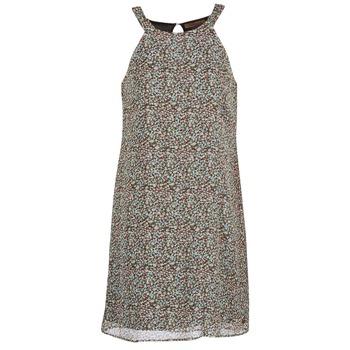 textil Dam Korta klänningar DDP DAMERIA Flerfärgad