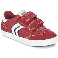 Skor Pojk Sneakers Geox J KIWI B. M Röd / Marin