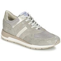 Skor Dam Sneakers Geox SHAHIRA A Grå