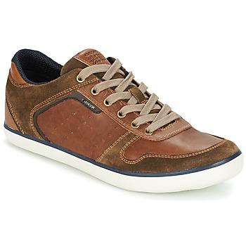 Skor Herr Sneakers Geox BOX C Brun