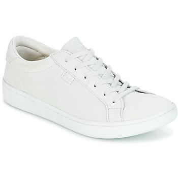 Skor Dam Sneakers Keds ACE MONO Grå