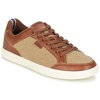 Skor Herr Sneakers Kickers AART HEMP Brun / Beige