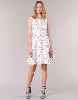 textil Dam Korta klänningar Derhy MAESTRIA Vit