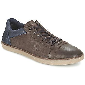 Skor Herr Sneakers Kickers CALIC Brun / Mörk