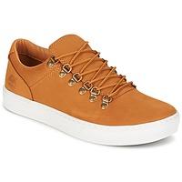 Skor Herr Sneakers Timberland ADV 2.0 CUPSOLE ALPINE OX Brun