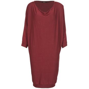 textil Dam Korta klänningar Kookaï BLANDI Bordeaux
