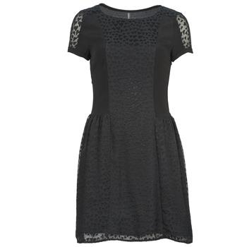 textil Dam Korta klänningar Naf Naf KEUR Svart