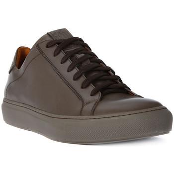 Skor Herr Sneakers Lion WEST 311 Marrone