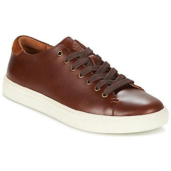 Skor Herr Sneakers Ralph Lauren JERMAIN Brun