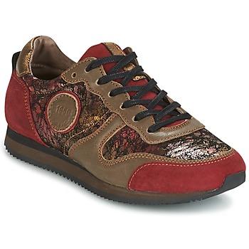 Skor Dam Sneakers Pataugas IDOL Röd / Brun