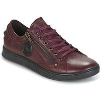 Skor Dam Sneakers Pataugas JESTER Bordeaux