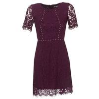 textil Dam Korta klänningar Morgan ROUJEL Bordeaux