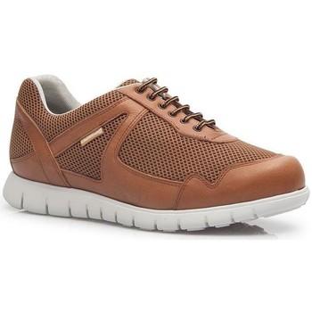 Skor Herr Sneakers Calzamedi DEPORTIVO CUERO