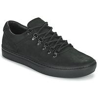 Skor Herr Sneakers Timberland ADV 2.0 CUPSOLE ALPINE OX Svart