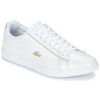 Skor Dam Sneakers Lacoste CARNABY EVO 118 6 Vit