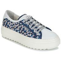 Skor Dam Sneakers Serafini SOHO Blå