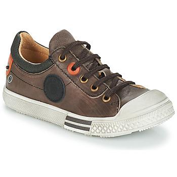 Skor Pojkar Boots GBB UGO Brun