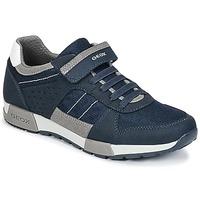 Skor Pojk Sneakers Geox J ALFIER B. A Marin / Grå