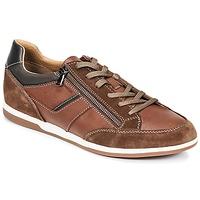 Skor Herr Sneakers Geox U RENAN C Brun