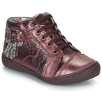 Skor Flick Boots Catimini RHUBARBE Oxblodsfärgad