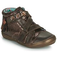 Skor Flickor Boots Catimini ROQUETTE Läderbrun