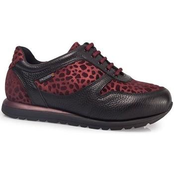 Skor Dam Sneakers Calzamedi DEPORTIVAS  LEOPARD W BURDEOS