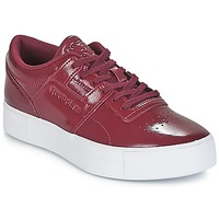 Skor Dam Sneakers Reebok Classic WORKOUT LO FVS Bordeaux