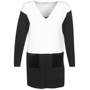 textil Dam Korta klänningar Morgan RMAOLI Flerfärgad