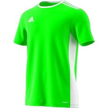 textil Herr T-shirts adidas Originals Entrada 18 Gröna