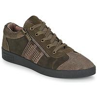 Skor Dam Sneakers Mam'Zelle BADRIA Brun