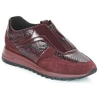 Skor Dam Sneakers Geox D TABELYA Bordeaux