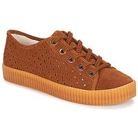 Skor Dam Sneakers André STARLIGHT Brun